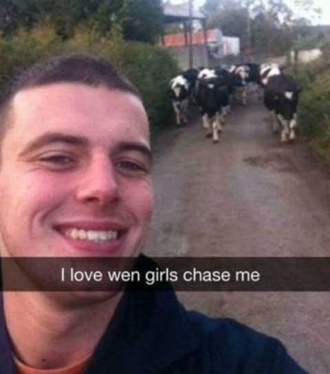 cowschasing_funny_snapchats