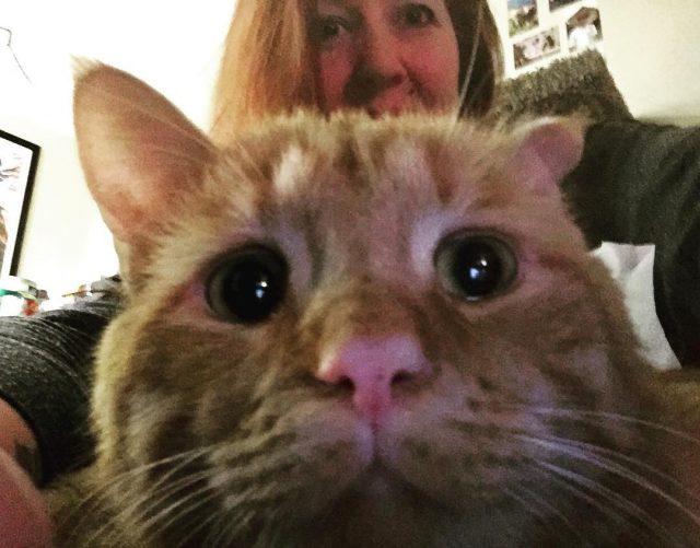 Source Instagram/benbencatcat